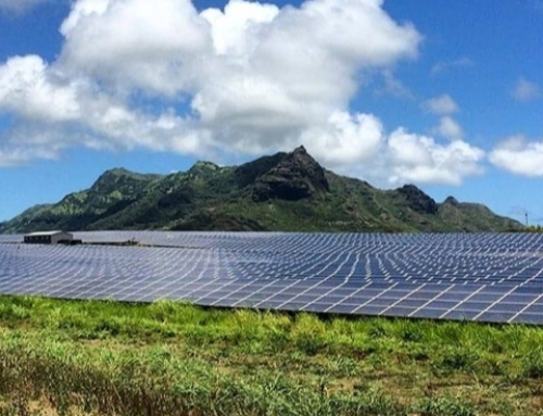 5 Ways Small Biz Gains from Renewable Energy